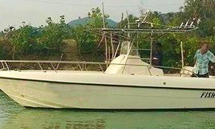All fishing equipment included + lunch on this fishing tour!