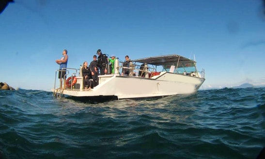 Passenger Boat Rental In Florianópolis