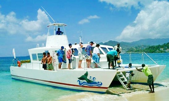 44' Power Catamaran Tour Boat In St Georges