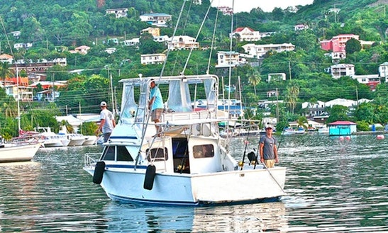 28' Sport Fishing Charter In Grenada