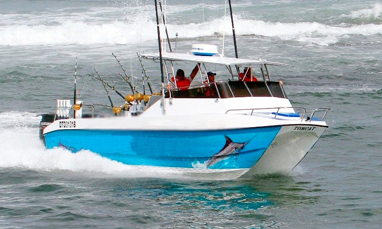 25' Tom Cat Fishing Charter In Shelly Beach