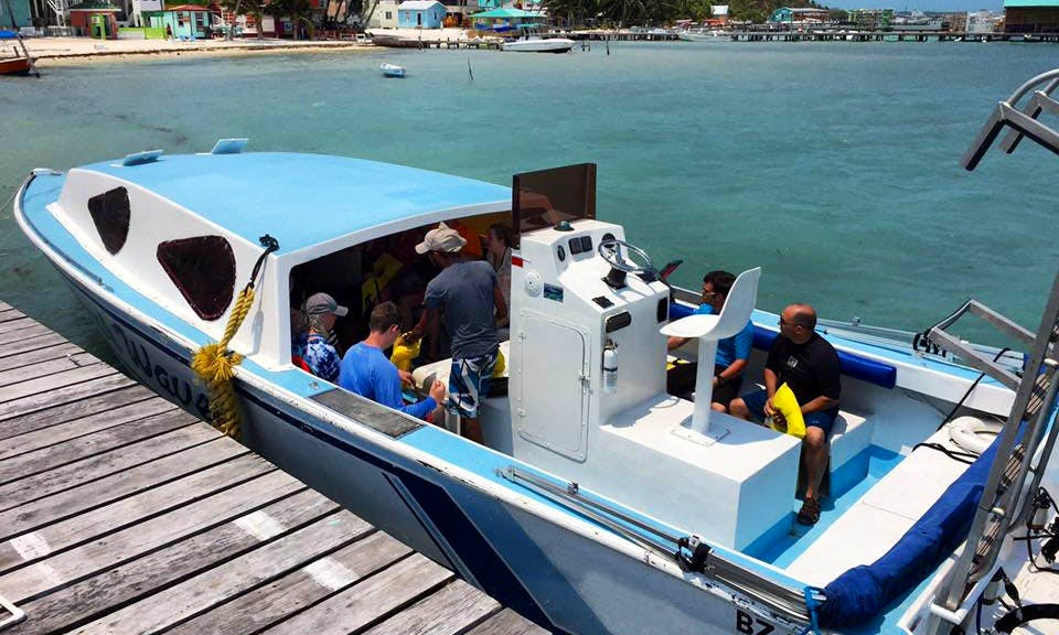 Turtle Full Day Adventure From Belize City