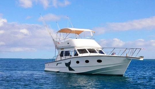 Sport Fisherman Charter In Grand Riviere Noire, Mauritius