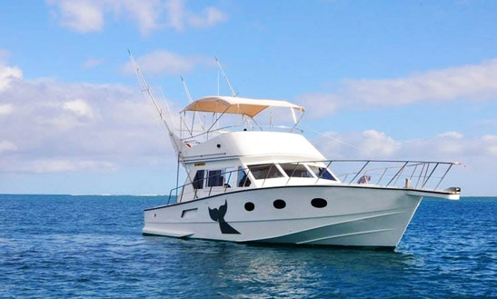 Sport Fisherman Charter In Grand Riviere Noire, Mauritius