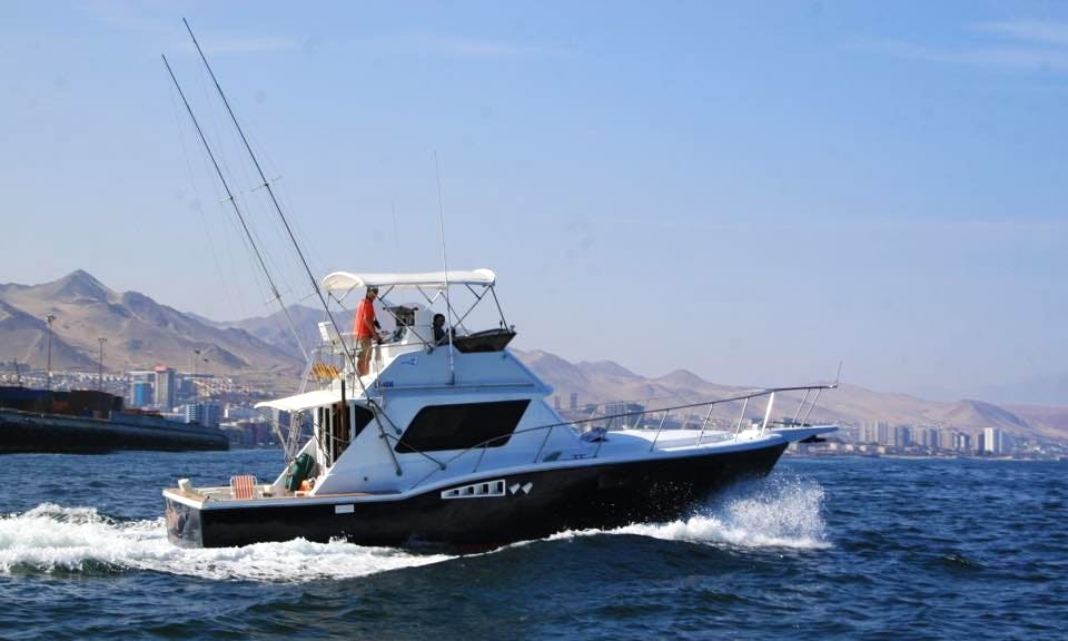 Enjoy Fishing in Antofagasta Bay, Chile on 36' Sport Fisherman