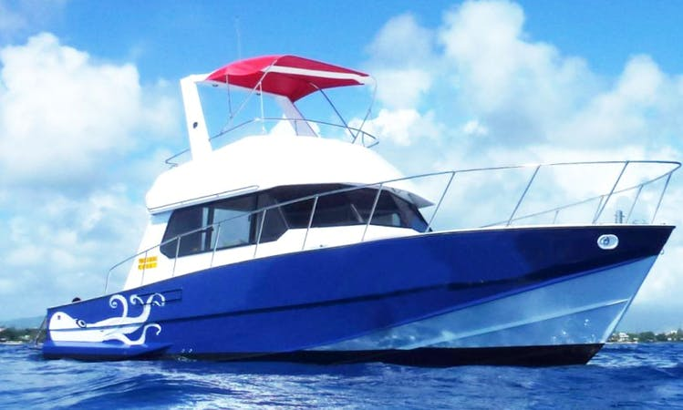 Group Diving and Private Diving Charters in Grand Baie Mauritius