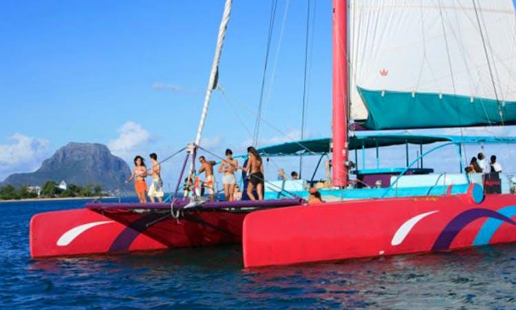 Découvrez les Iles du nord a bord du Catamaran