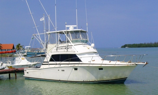 Enjoy Fishing In Falmouth, Jamaica On A Sport Fisherman