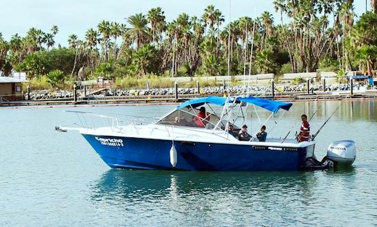 28 39 californian panga fishing charter in san jos del cabo for San jose del cabo fishing charters