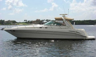 Charter 46' Sea Ray Motor Yacht in Boca del Río, Mexico