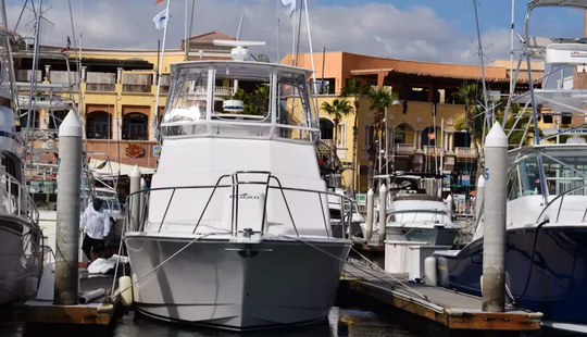 Enjoy Fishing In Baja California Sur, Mexico On 35' Cable Cab Sport Fisherman