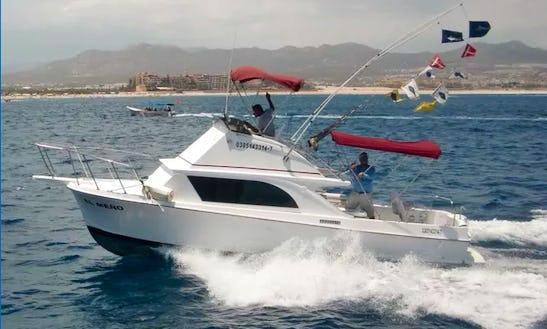 Enjoy Fishing In Baja California Sur, Mexico On 26' Meno Sport Fisherman