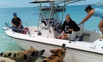 Island Adventure Aboard a 6 People Center Console in Calvin Hill, The Bahamas