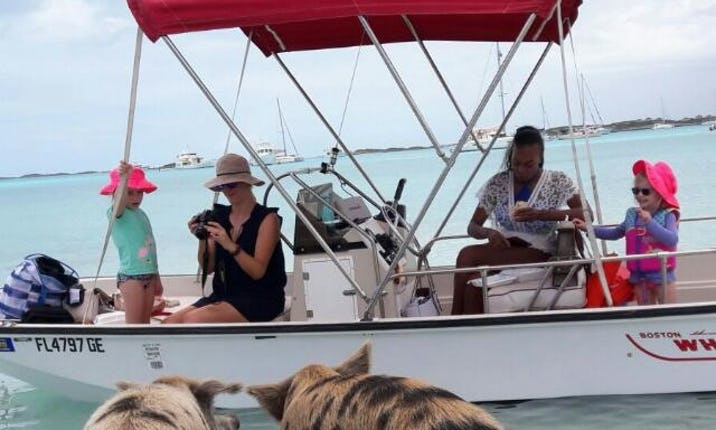 Swiming Pigs Boat Tours in Exuma Islands, The Bahamas