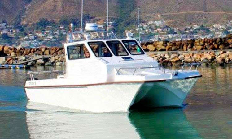 "Cape Town Fishing Charter on 30ft ""Bateleur"" Power Catamaran with David"