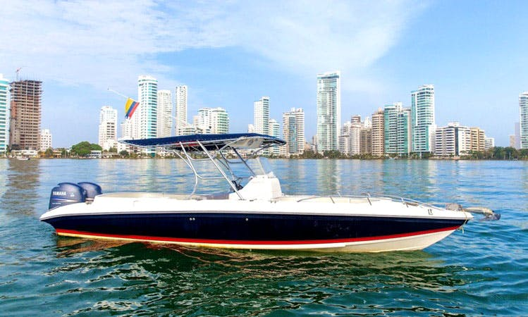 29' Center Console Rental In Bolívar, Colombia