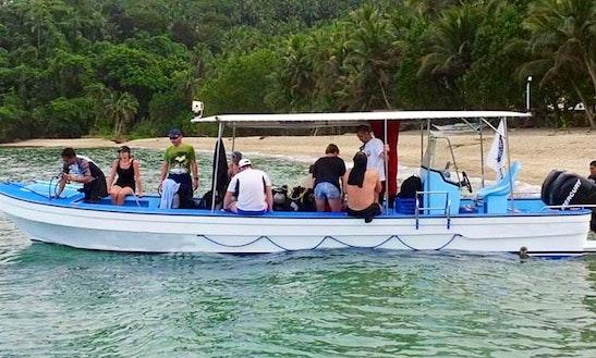 Mermaid 2 Diving Speed Boat In Puerto Galera