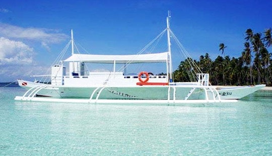 Diving Trips And Courses In Panglao, Philippines