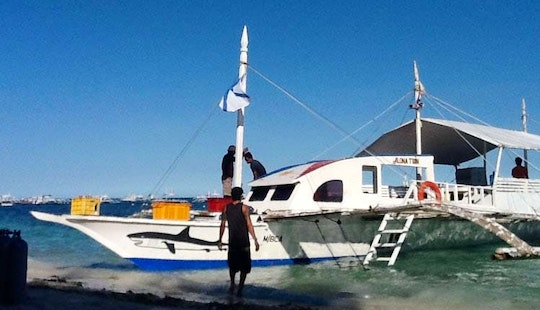 Experience Diving Trips And Courses In Panglao, Philippines