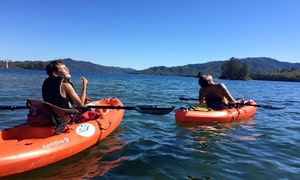 Top 10 Lake Shasta Boat Rentals For 2020 With Reviews