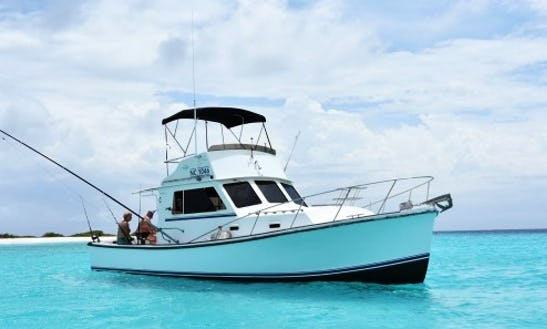 Enjoy Fishing In Willemstad, Curaçao On 35' Sport Fisherman