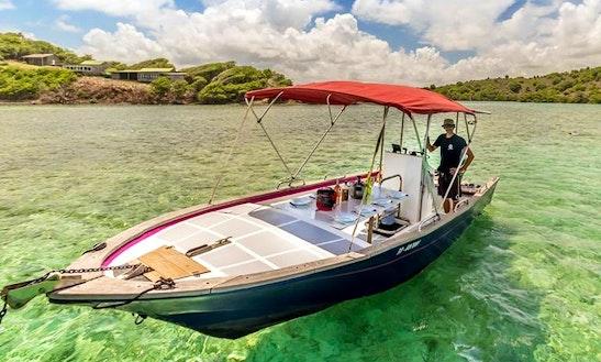 Charter 23' Bowrider In La Trinité, Martinique