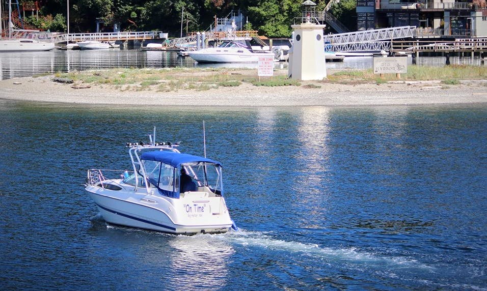 Gig Harbor Guided Tours and Charter with Captain Ken