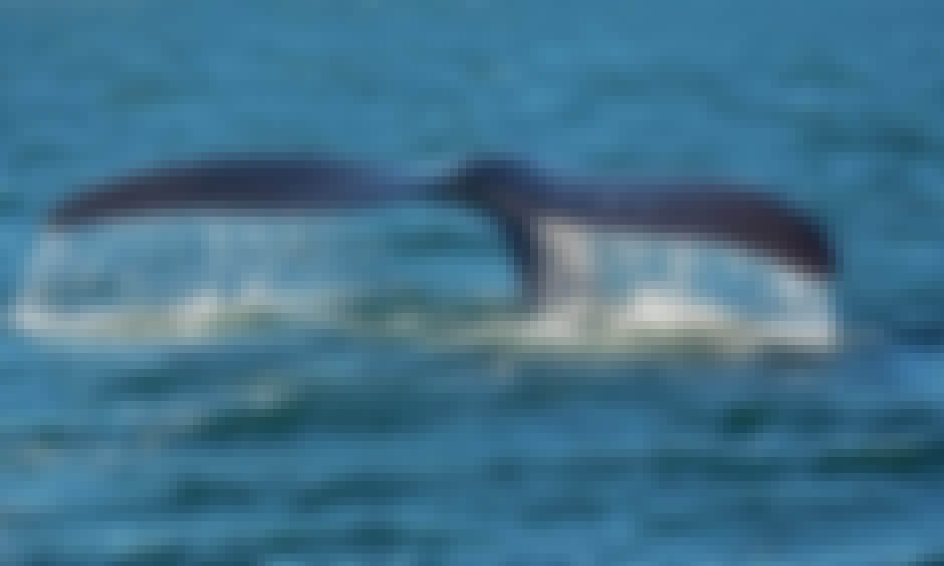 Spectacular Boat Based Whale Watching Tour for 2 Hours in Western Cape, South Africa