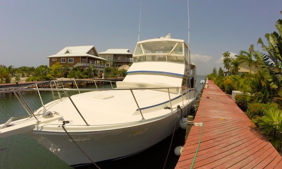 Charter 50' viking Motor Yacht in Stann Creek, Belize