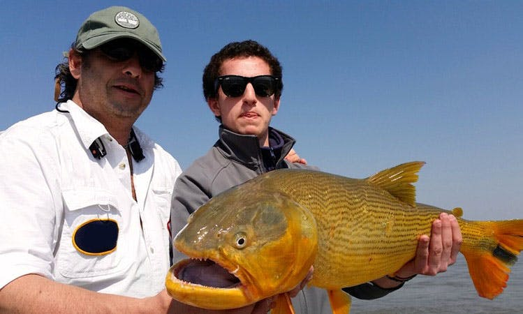 Enjoy Best Dorado Fishing Lodge in Salto, Uruguay, Dinghy with Guide only