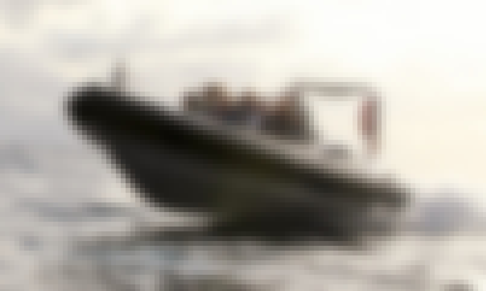 Charter a Rigid Inflatable Boat in Calheta, Portugal