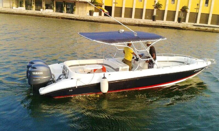 29' Bravo Center Console Rental In Cartagena, Colombia