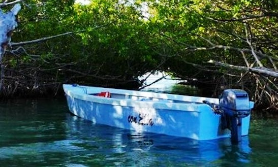 Charter A Dinghy In Lajas, Puerto Rico
