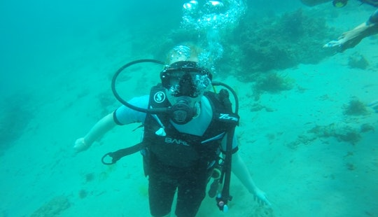 Scuba Diving In Tanjung Benoa