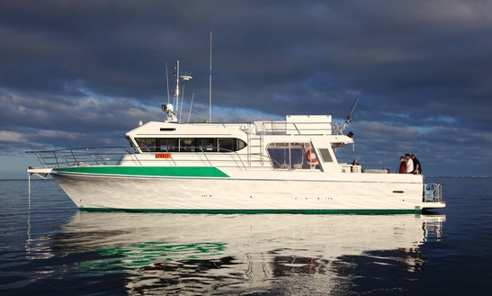 Enjoy Fishing In Fremantle, Western Australia With Captain Joseph