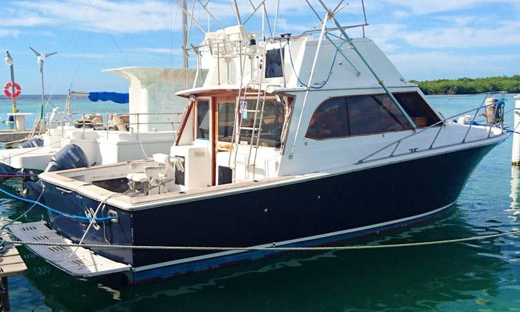 """Fishing Charter On 35ft """"Egg Harbor"""" Sports fisherman Yacht In Boca Chica, Dominican Republic"""