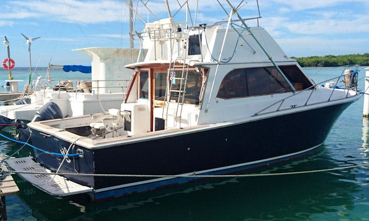 "Fishing Charter On 35ft ""Egg Harbor"" Sports fisherman Yacht In Boca Chica, Dominican Republic"
