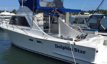 Enjoy Fishing in Denarau Island, Fiji on Dolphin Star Cuddy Cabin