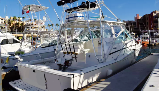Enjoy Fishing In Baja California Sur, Mexico On 35' Cabo Express Sport Fisherman