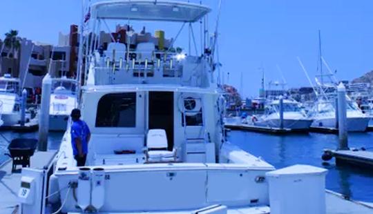 Enjoy Fishing In Baja California Sur, Mexico On 38' Blackfinn Sport Fisherman