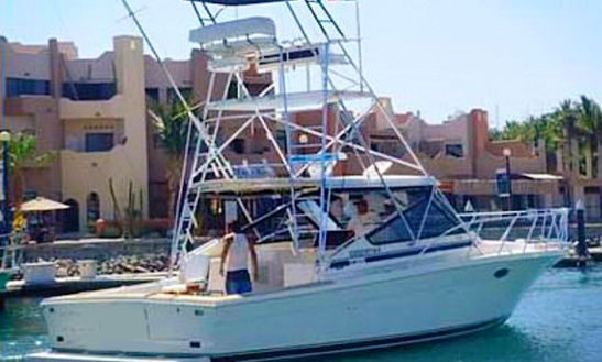 Enjoy Fishing In San José Del Cabo, Mexico On 38' Black Fin Sport Fisherman