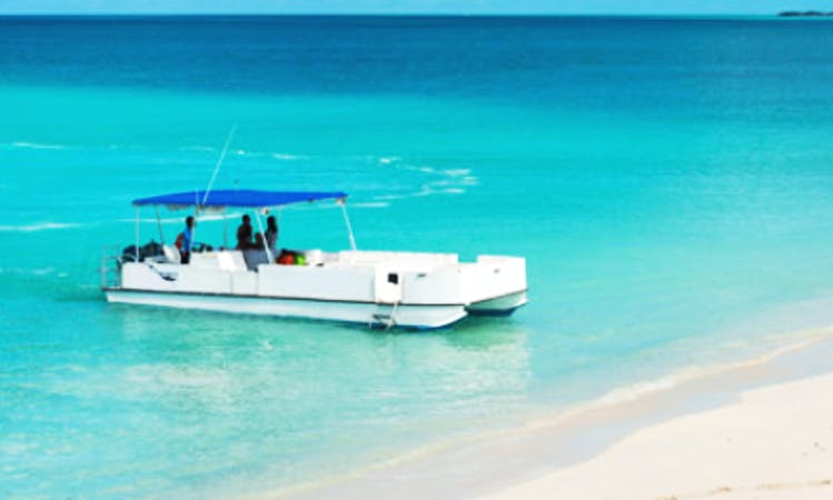 Charter 38ft 'Cool Cat' Luxury Pontoon In Caicos Islands, Turks and Caicos Islands