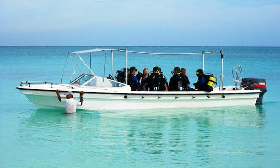 Discover The Beautiful Dive Sites In Cayo Coco Island, Cuba