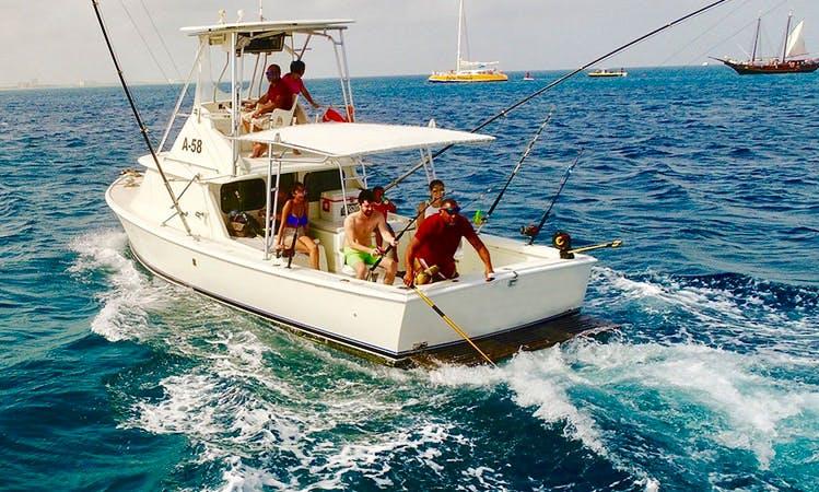 """Fishing Charter On 31ft """"Carla"""" Bertram Yacht In Oranjestad, Aruba"""