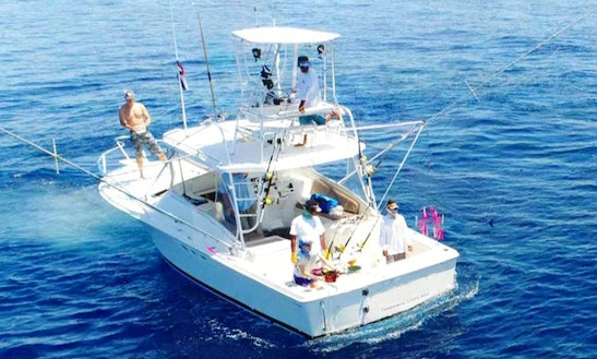 Fishing Charter On 31' Luhrs Express Yacht In Herradura, Costa Rica