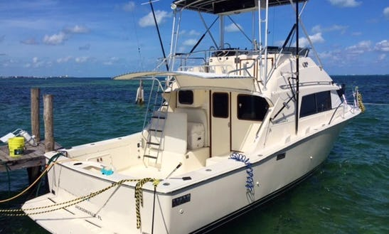 Cancún Fishing Charter On Bertram 33 Sportfishing Yacht