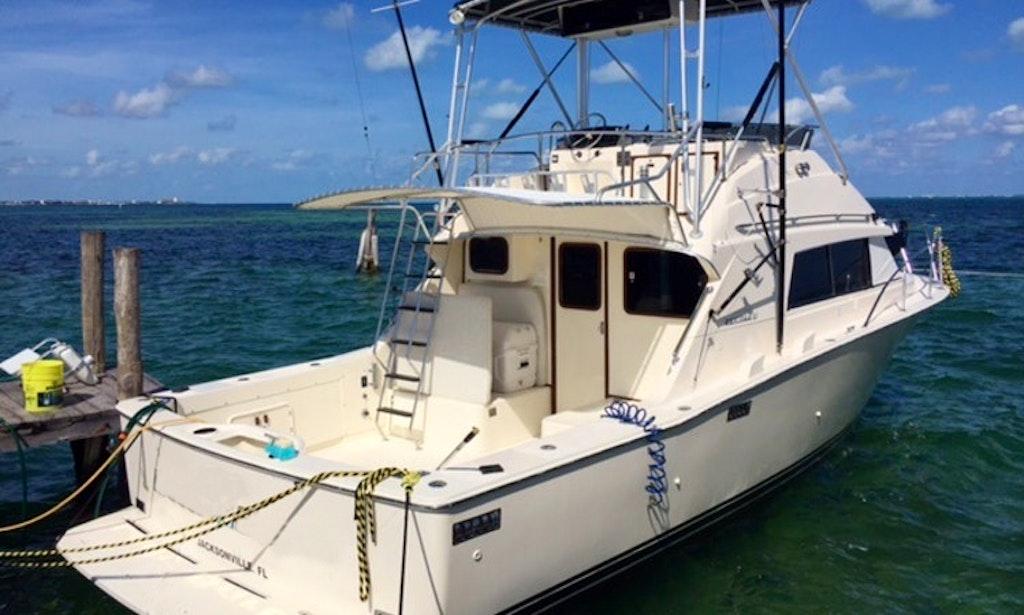 Canc n fishing charter on bertram 33 sportfishing yacht for Cancun fishing charters
