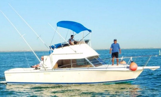 Sportfishing Charter On 31' Phoenix In Cancún, Mexico