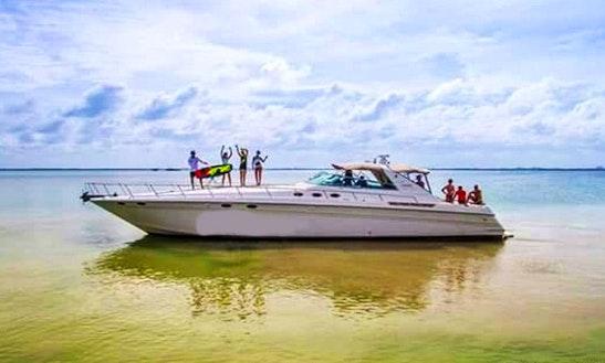 Charter The 63' Sea Ray Power Mega Yach From Cancún, Quintana Roo