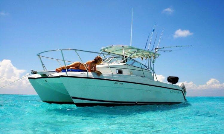 27' Cruising Charter in Playa del Carmen, Mexico